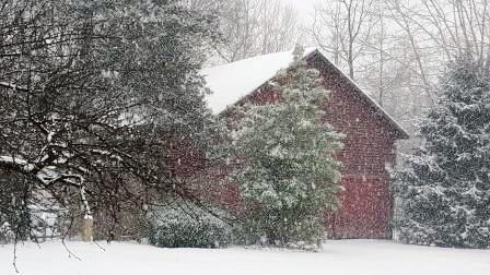 cabins on mill creek 2016 snowstorm